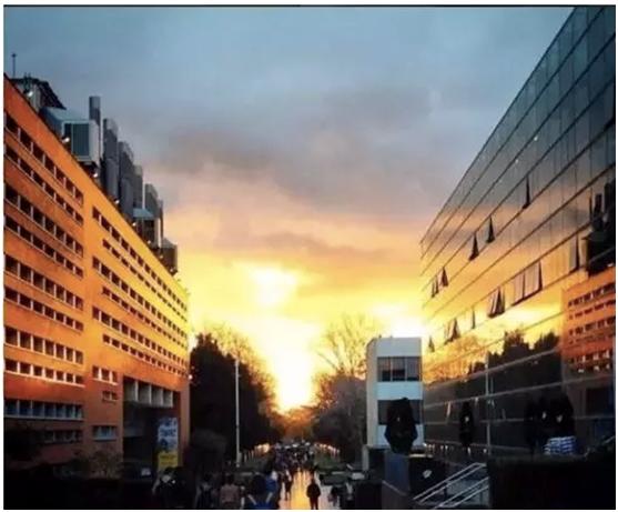 澳洲UNSW大学科学学院、艺术设计学院与国防学院介绍