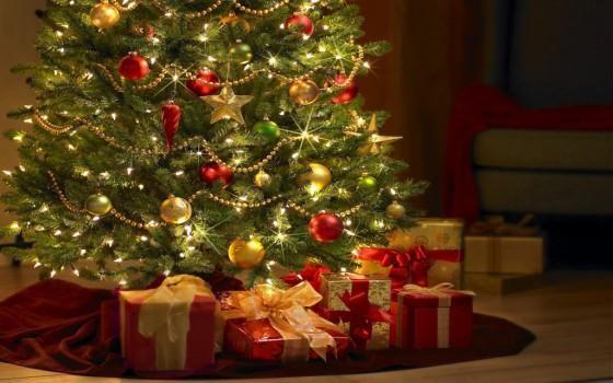 新西兰圣诞节都有哪些传统?(一)